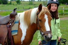 horses13